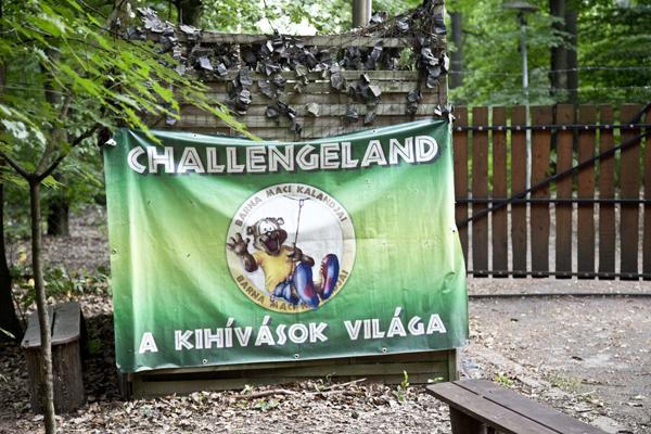 challengeland11