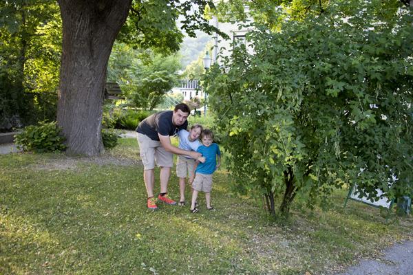 The bush where David cried