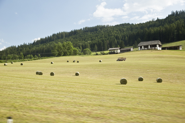 Bales of hay in the Austrian countryside.