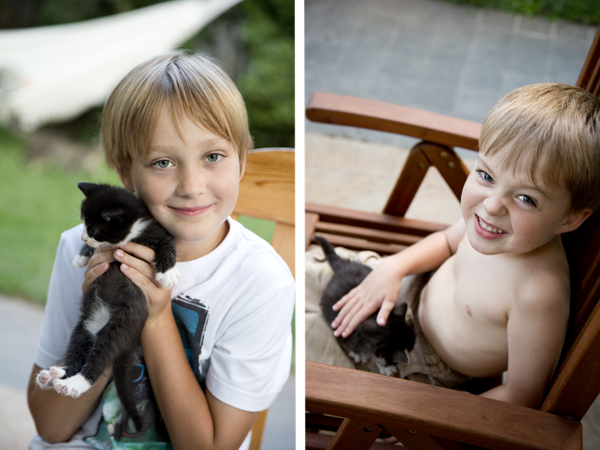 The boys and the kittens