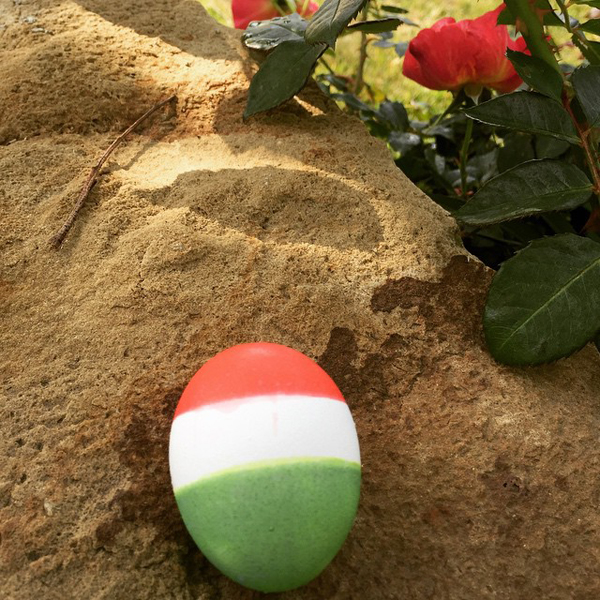 And of course, our American Easter Bunny hid a Hungarian flag Easter egg.