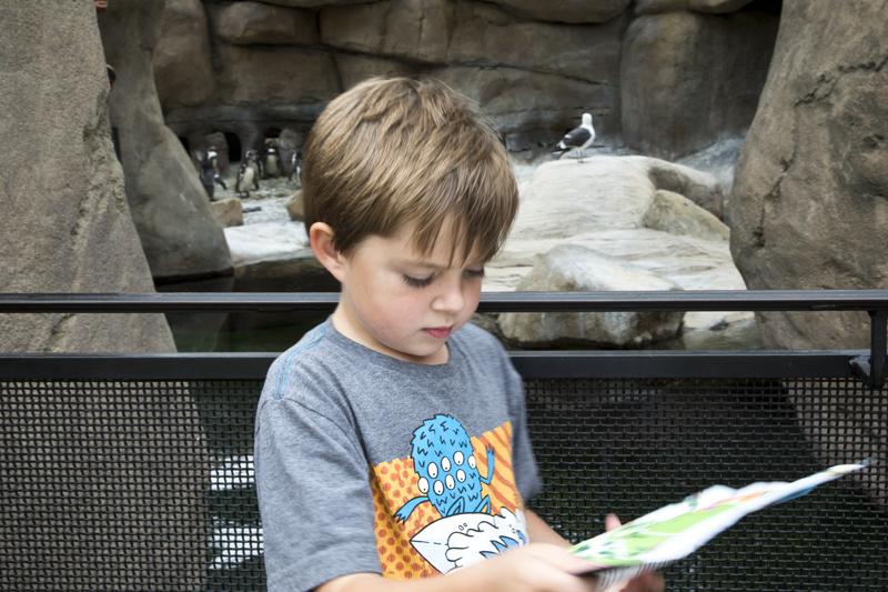 Santa Barbara Zoo 010